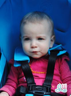 Orbit Baby Generation
