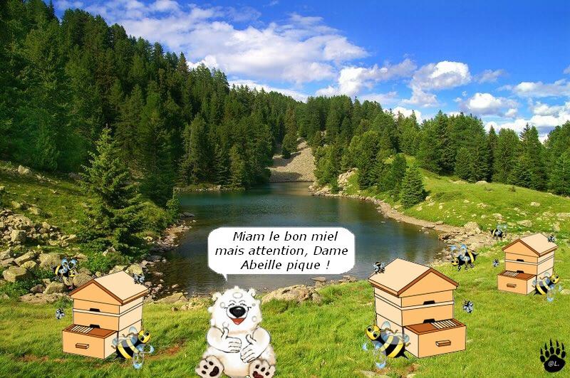 pourquoi installer une ruche dans son jardin
