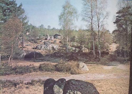 La civilisation inconnue de Fontainebleau