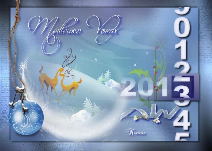 Meilleur voeux 2013