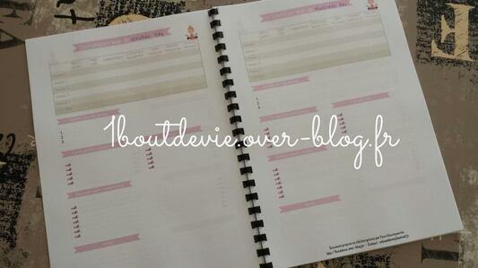 Mon carnet de blogueuse organisée