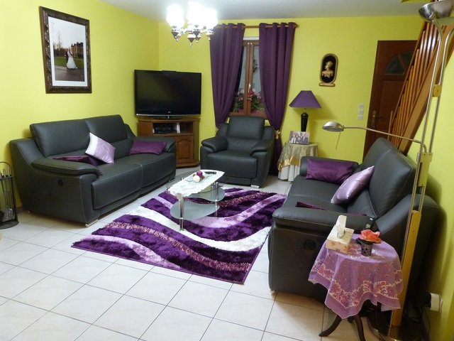 tapis salon gris et prune enredada