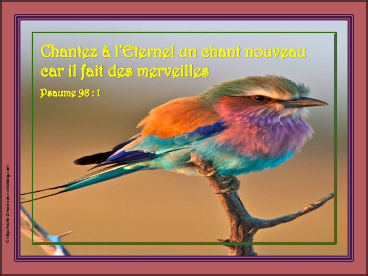 Chantez à l'Eternel un chant nouveau - Psaume 98 : 1 - Ecrin2moncoeur