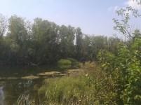 Bregov izvor4