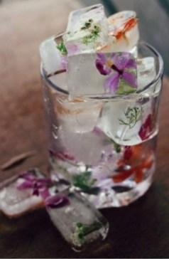Květy a bylinky pro jarní drinky