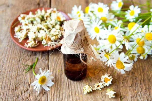 Чайное дерево масло при экземе
