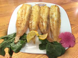 Dil-Balığı-1Dil Balığı