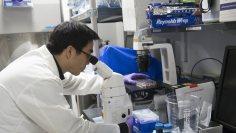 Βρέθηκε το «άγιο δισκοπότηρο» της αντικαρκινικής έρευνας