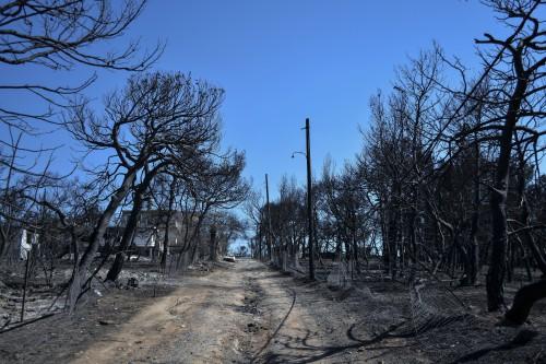 Περιφερειακός σύμβουλος Δούρου: Είχα ειδοποιήσει από νωρίς ότι η φωτιά θα πήγαινε στο Μάτι