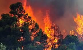 Πολύ υψηλός κίνδυνος πυρκαγιάς (κατηγορία 4) για αύριο Τετάρτη 5 Σεπτεμβρίου   2018