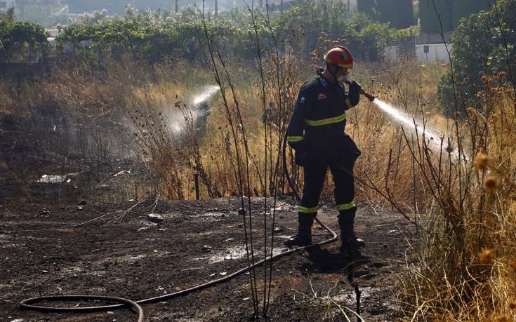 Υψηλός κίνδυνος πυρκαγιάς σε Πελοπόννησο και Ιόνιο