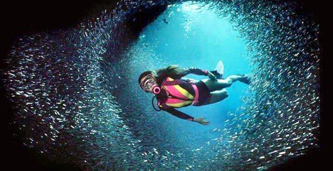 Καταδυτικός τουρισμός και θαλάσσια πάρκα στον Κορινθιακό