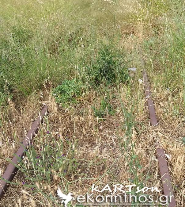 Παρότι ξεκίνησε η αντιπυρικη περίοδος οι γραμμές του ΟΣΕ θυμίζουν δασος