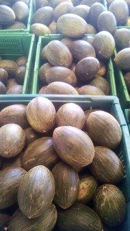 melones-ecologicos-ekotania