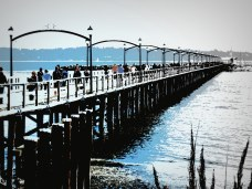 Busy Whiterock Pier - Photography