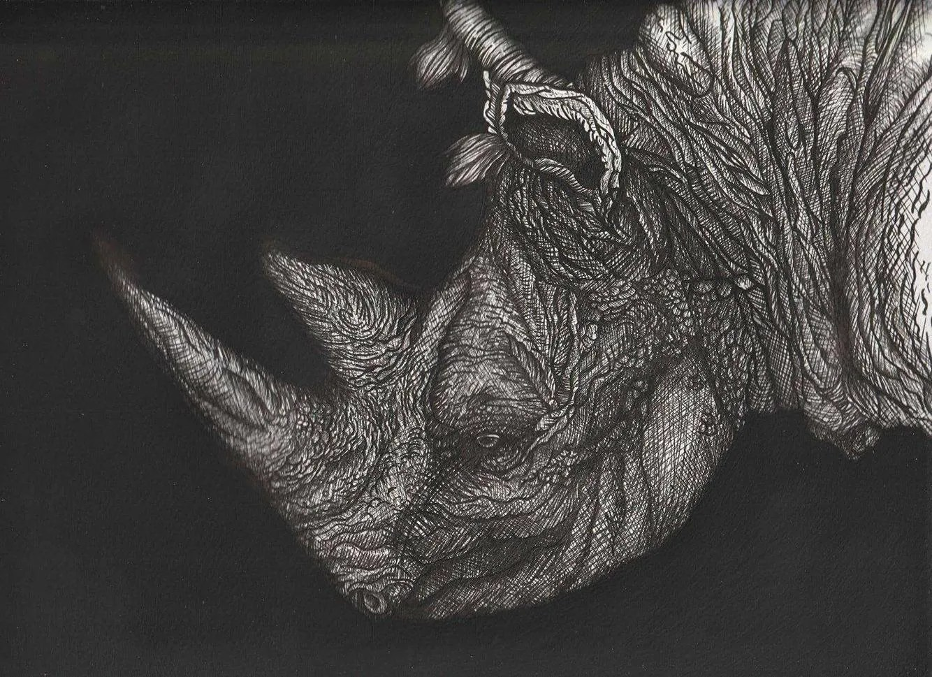 Artwork of an endangered rhino becomes Eksentrika's Art of the Year 2017