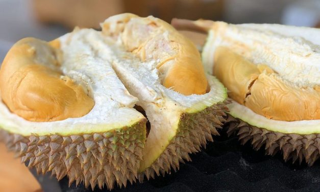 POETRY | The Durian Tree by Jayati Roy