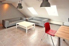 zdjęcie przedstawia salon w apartamencie w Szczecinie na wynajem