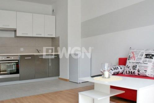 zdjęcie prezentuje salon oraz aneks kuchenny w apartamencie do wynajęcia w Głogowie