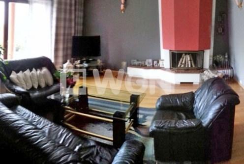 na zdjęciu salon w luksusowej willi do sprzedaży w okolicy Cieszyna
