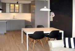 zdjęcie przedstawia nowoczesny aneks kuchenny w ekskluzywnym apartamencie do wynajęcia w Szczecinie