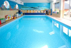 komfortowy basen przy ekskluzywnej willi do sprzedaży Szczecin