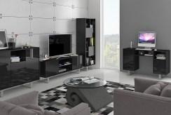widok na salon w ekskluzywnym apartamencie do sprzedaży Grudziądz