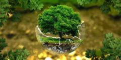الأصول الإسلامية للبيئة