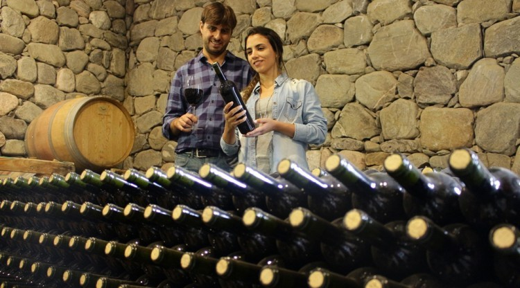Expo Delicatessen & Vinos 2019