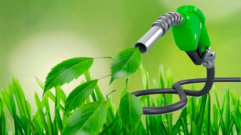 La situación de la energía nacional