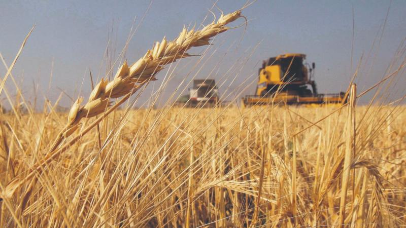 Una estimación que beneficia a la agroindustria