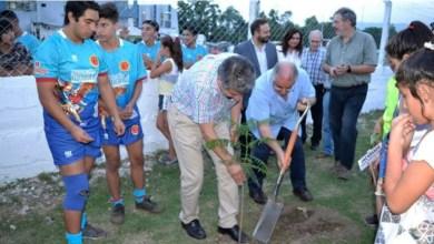 Photo of Plantación de árboles en Tucumán por la Paz