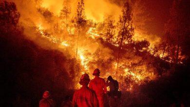 Photo of El humo de los incendios en Australia llega hasta Nueva Zelanda