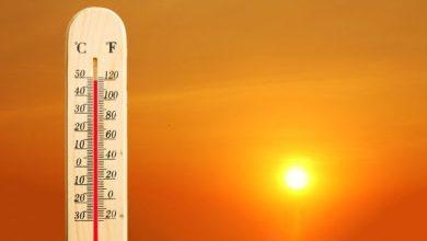 Photo of El 2019 fue uno de los años más cálidos de la historia
