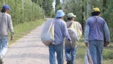 Photo of Caminaron 120 kilómetros de La Rioja a Catamarca escapando de la pandemia