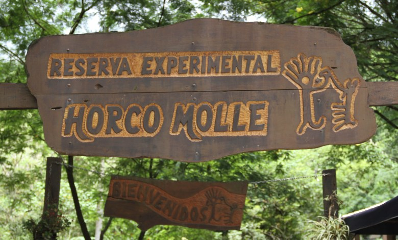 Horco Molle