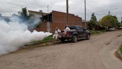 Photo of Números alentadores: más del 80% de personas se recuperaron del dengue