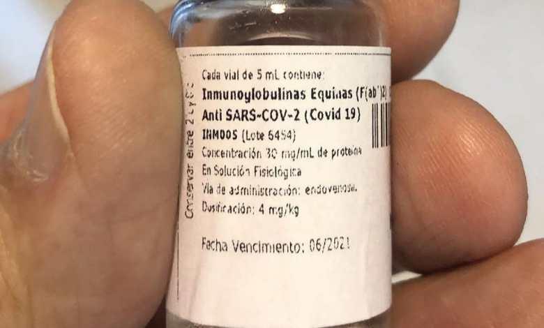 Científicos argentinos crearon un suero que neutraliza el coronavirus