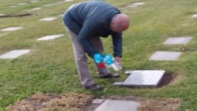Photo of No se deben dejar recipientes con agua en cementerios