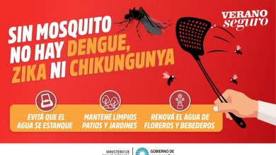 Photo of Más de 6000 casos de dengue en Tucumán