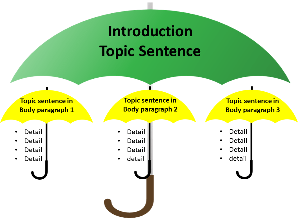 topic sentence essay Basic essay format note:  thesis generally, the topic sentence is placed at the beginning of a paragraph, but the location and.