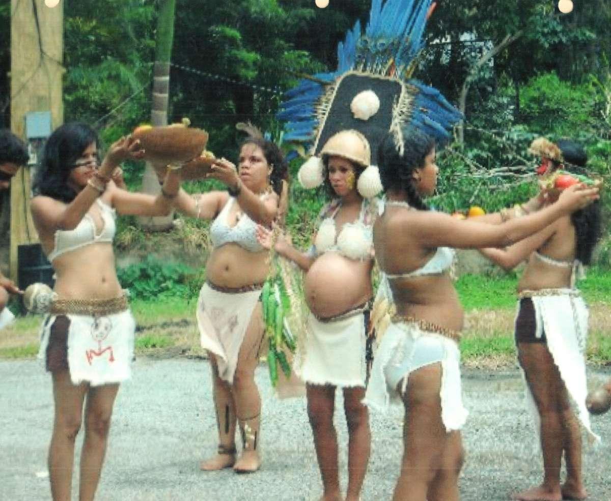 Jornada Indigena 1