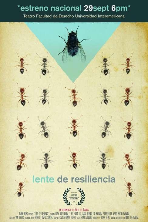 LensOfResilence