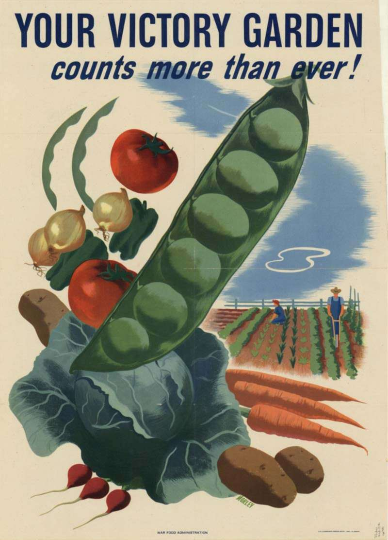 Agriculture Department. War Food Administration. Printer U.S. Government