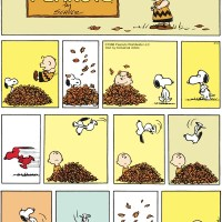 six word saturday - snoopy cartoon