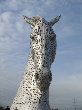 Kelpie head down