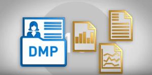 2. Site runs a tracker for a Data Management Platform (DMP).