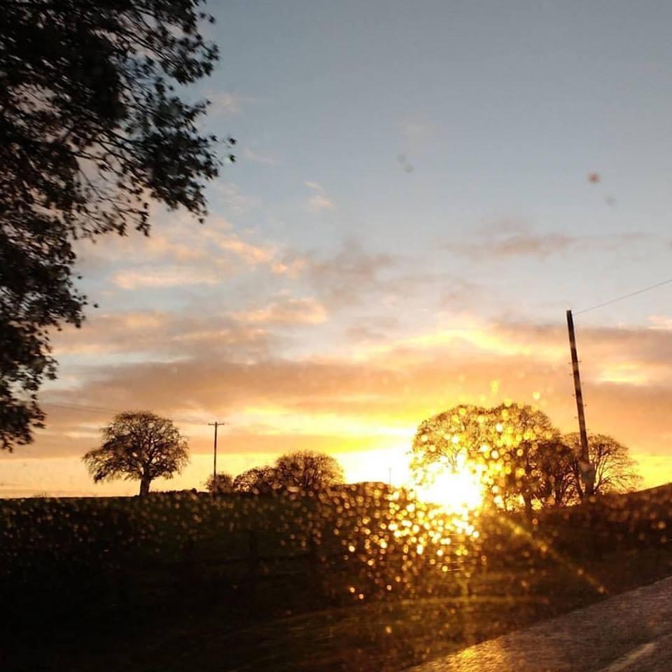 sunshine-mornring-blogger-conference-elainesrovesntroves