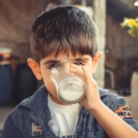 Intoleranță la lactoză și alergie la cazeină.2 Proteine din lapte