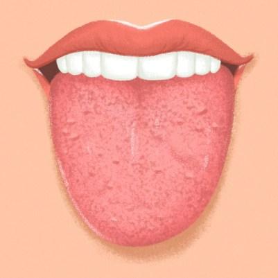 limba